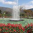 強羅公園の噴水再び